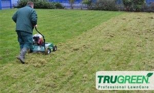 TruGreen-Lawn-Analysis